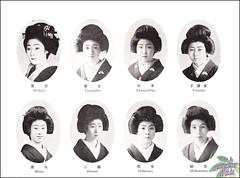 47th Kamogawa odori-1929 (kofuji) Tags: dance kyoto maiko geiko geisha kamogawa pontocho odori hisao tatsuko hideyu hinazo tamagiku tamayakko hidematsu hidezuru