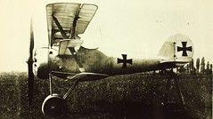 Pfalz, Dr.I (San Diego Air & Space Museum Archives) Tags: dri pfalz pflalz