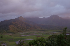 Hanalei Valley, from the Princeville Overlook (Alexander Rabb) Tags: film hawaii nikon fuji kauai hi nikkor hanalei princeville nikonos fujisuperiaxtra400 c41 hanaleivalley kuhiohighway nikonosv tarofarm wnikkor35mmf25 princevilleoverlook hawaii560