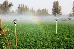IMG_2161 (ســ ع ـــد :*) Tags: trees sky nature water rainbow day farm waxing الطبيعة الصبح الرحمن المزرعة الماء قوس السماء النهار الأشجار