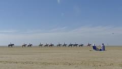 Am Strand von St.Peter-Ording (bagalute) Tags: 2016 bagalute nikon nikond700 nikkor2412014ged beach nordsee strand stpeterording dxo pferde sommer dxoopticspro11 urlaubindeutschland