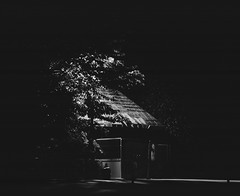 2016 Parc des Buttes-Chaumond, Paris (carlao126) Tags: neopan fujifilm pentax67 pentax 120 film photography analog blackwhite nightshot urbanism urbanculture urbanlandscape