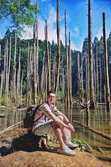 (M.K. Design) Tags:     12                taiwan nantou lugu forest  wetland nikon d800e hdr nature landscapes scenery tree mountains travel fog water lake
