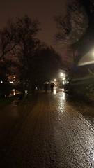 DSC04177 (kremer.christiane) Tags: germany alemania bremen street calle night noche rain lluvia umbrella paraguas light luz contrast contraste trees rboles path camino walk caminar park parque pavement