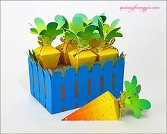 Hp qu khu vn c rt cho b yu (quatangthuongyeu) Tags: lm qu handmade gift