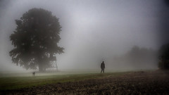 Old friends on their morning walk (ralfkai41) Tags: outdoor spaziergang walk baum landschaft man nature mist mann landscape fog dog nebel natur hund