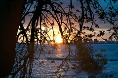 Certi tramonti_4 (NIKOZAR (Nicola Zaratta)) Tags: sunset sea sky italy panorama cloud beach clouds landscape nikon italia tramonto mare panoramas cielo albero colori lungomare puglia paesaggio controluce citt taranto ciminiere panorma baia apulia jonio d90 nikkor50mm marpiccolo tarantovecchia margrande italsider litoraneajonica tramontosulmare nikond90 metalmeccanica nikkor50mm14g altojonio nikonnikkor50mm14g nikozar