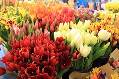 Tulips for Sale (JB by the Sea) Tags: seattle flowers flower washington tulips tulip pikeplacemarket washingtonstate april2012