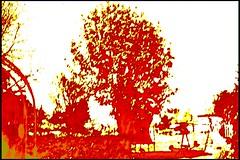 SDIM0039_heatmap (bitte namen eingeben) Tags: abstract ir thermal heatmap thermisch falschfarben