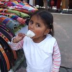 """BIO 245: Ecology of Ecuador<a href=""""http://farm9.static.flickr.com/8151/7142156591_2ba596dca2_o.jpg"""" title=""""High res"""">∝</a>"""