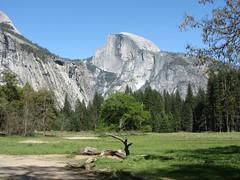 Half Dome (rvr) Tags: california yosemite halfdome