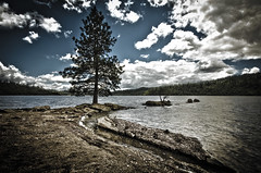 Island in the Wilderness (Martin Beil) Tags: camping lake northerncalifornia forest norcal wilderness cherrylake