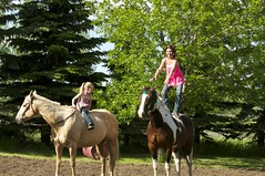 DSC_3109 (Debbie Prediger Photography) Tags: horses playing canada green grass children fun outside photography lawn images alberta getty debbie cadogan prediger kidsbeingkids