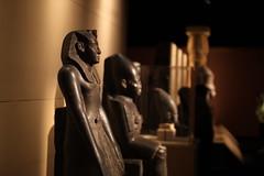 IMG_6463 (timothycgoodwin) Tags: seattle washington kingtut egypt museums ancientegypt tutankhamun pacificsciencecenter
