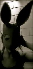 Mscara de coelho (Bling Blings) Tags: rabbit eva mask coelho mscara