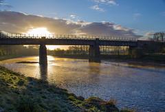 Old Railway Bridge Avenham Park