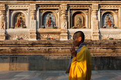 Buddhism, Bodh Gaya (Marji Lang Photography) Tags: travel light portrait people woman india colors yellow composition contrast jaune walking religious temple colorful warm colours shadows walk couleurs buddha buddhist indian faith religion pray praying documentary statues buddhism carving nun bouddha holy amarillo devotion colourful shavedhead tones stonecarvings bodhi buddhas warmlight nonne bouddhisme bihar contrasted bodhgaya mahabodhi buddhastatue travelphotography bodhitree buddhacarvings bouddhiste ef247028l indiansubcontinent mahabodhitemple  religiousscene canoneos5dmarkii bhrat bhratgaarjya travelanddocumentaryphotography  marjilang mahabodhimahaviharatemple