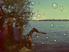 Summer Fun (Digital_Third_Eye) Tags: sky lake apple water wisconsin vintage interesting midwest capital july bubbles hobby capitol madison wi app 2012 iphone danecounty digitalthirdeye 43088886501793 89414978027344