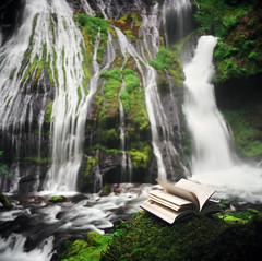 page by page at panther creek falls (manyfires) Tags: film fairytale analog mediumformat square landscape book waterfall washington moss pages hasselblad story pacificnorthwest novel verdant lush tale hasselblad500cm panthercreekfalls thisbook bitterblue bykristincashore lookslikeitwantstofly