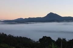 High altitude (counterculturecoffee) Tags: altitude bolivia origin mlc sourcing cenaproc nuevallusta