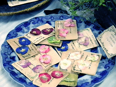 Saltaire Handmade Makers' Market (Wychbury Designs) Tags: china uk flowers blue england white booth hair display market tea handmade yorkshire pansy clips craft stall fair accessories etsy pansies herbal saltaire blueandwhite bobbypins folksy violas willowpattern wychbury