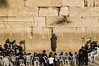 Children praying in the Kotel, Jerusalem - Crianças rezando no Kotel, Jerusalem (Ilan Ejzykowicz) Tags: ירושלים jeruzalem westernwall wailingwall gerusalemme jerusalén murodelaslamentaciones 耶路撒冷 הכותלהמערבי иерусалим murodelpianto kudüs klagemuren klagemauer כותל ierusalim herusalem murdeslamentations murodeloslamentos エルサレム ścianapłaczu grædemuren ağlamaduvarı muroccidental murooccidentale jeruzsálem vestmuren стенаплача ιερουσαλήμ حائطالبراق jeruzalém اورشلیم xerusalén raudųsiena siratófal jeruzalė западнаястена йерусалим जेरुसलेम জেরুসালেম यरुशलम zeďnářků ерусалим ерусалім იერუსალიმი cherusalem ܐܘܪܫܠܡ herusalẽ qüds ཇེ་རུ་ས་ལེམ། jeruusalemm jeruzalim iarúsailéim 예루살렘երուսաղեմ yérusalem jerozolëma әлқұдыс yerusalemu orşelîm ജെറുസലേം జెరూసలేం เยรูซาเลม уршалим стенатанаплача vakarinėsiena muremzachodnim zidulplângerii västramuren batıduvarı стінаплачу bứctườngthankhóc