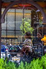 Reflet dans une vitre (marinvirieux) Tags: japan japon tokyo reflet vitre glass photographe japonaise rue extrieur restaurant bouteille biere vgtation arbre arbres buisson moulures taxi voitures commerciale centre