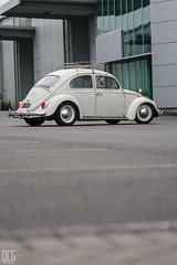 IMG_4379 (Dorian-G) Tags: vw volksagen beetle low stance car cars automotive new zealand auckland