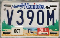MANITOBA 2014 ---BLACK BISON TRAILER PLATE (woody1778a) Tags: trailer 2014 manitoba mycollection myhobby mytraders mystery numberplate