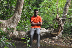 Reni my guide sits (and later stands) on the branch overhanging the pool (oldandsolo) Tags: kerala india godsowncountry vagamon vagamonhills idukkidistrict hillscenery nature photography takingpictures flora lush thickvegetation pool pond water murky stillwater stagnant overhanging thicket snakehabitat scenic naturalsetting overhangingbranch tourguide