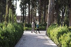 (A.Atena) Tags: fin garden fingarden iran kashan people green trees nikon light 50mm