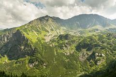 Dolina Piciu Staww Polskich. Z lewej piekny szlak na wistow Czub (czargor) Tags: outdoor inthemountain mountians landscape nature tatry mountaint igerspoland