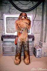 Chewbacca (disneylori) Tags: chewbacca starwars starwarslaunchbay disneycharacters meetandgreetcharacters nonfacecharacters hollywoodstudios waltdisneyworld disneyworld wdw disney