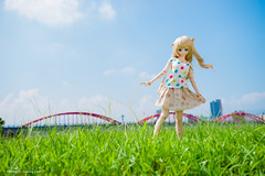 Morning of fall (smart991210) Tags: dds dollfiedream volks sony akira