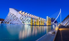Evening in the City of Arts and Sciences, Valencia Spain (go-Foto) Tags: valencia