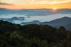 Wayah Wake Up Call (Longleaf.Photography) Tags: wayah bald sunrise vista scenic outdoor gsmnp franklin nc mountains fog