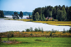 Summer view (Appe Plan) Tags: view summer deer animal fields crop medow forest trees houses boat water lake sky clouds wood woods nature landscape appe nikon d700 sweden vrmland