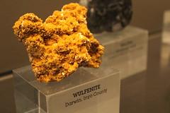 Wulfenite (horticulturehijinks) Tags: wulfenite mineral