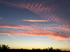 Sunset in South Western Ireland (firehouse.ie) Tags: colourful colours colors southwestern county clare ireland chemtrails chemtrail cloudscape cloud clouds sun skies sky evening down set setting sey sundown sunset dusk