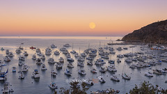 Catalina Full Moon (lockechrisj) Tags: catalina island catalinaisland avalon california 5d mark iv 5dmarkiv canon full moon fullmoon sun set sunset harbor boats ocean islandlife avaloncalifornia canon5dmarkiv l llense 1635 redring wideangle avalonharbor water boatharbor canon5d vacation travel greattravel travellocations beautifuldestinations travelmore californiacoast