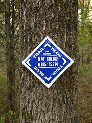 Helpful trail marker (Morton Fox) Tags: congoroadopenspace douglass pa