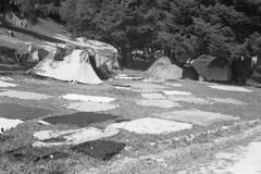 Como San Giovanni, Agosto 2016 (sirio174 (anche su Lomography)) Tags: profughi como comosangiovanni stazione parco rifugiati pannistesi panni bucato refugee refugees refugeecamp