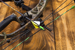 Compound hunting bow (Travis Photo Works) Tags: aim aiming archer archery arrow background bow bowframe bowgrip bowsight bowstring camouflage color compound equipment green hunt hunter hunting leash male man modern nature nockedarrow peepsight recreation shoot sport sportsman weapon woods young