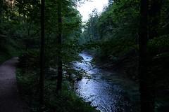 Gorja de Vintgar (2) / Eslovenia / Slovenia (Ull mgic) Tags: vintgar eslovenia slovenia gorja gorge riu rio aigua agua bosc bosque arbres arboles natura naturaleza nature fuji xt1