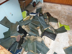 Well used wellies ;-) (willi2qwert) Tags: rubberboots rainboots regenstiefel gummistiefel gumboots wellies wellingtons