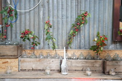 Gemma & Gordon (littlebotanica1) Tags: monachyle mhor barnwedding barn foliage ferns eucalyptus