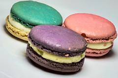 Non Oreos! (WilliamND4) Tags: cookies colorful color sweets dessert food tokina100mmf28atxprod nikon nikond610 macro macarons