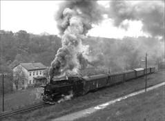 99 1783-2 working hard (RhinopeteT) Tags: railway steam east german