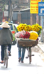 flower power (astroboy_71) Tags: street travel flowers color colour colors bicycle colorful asia southeastasia colours vibrant streetphotography vietnam hanoi sell southeastasiaimages