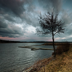 Lonely tree - Mrudden (- David Olsson -) Tags: sunset lake nature water clouds square landscape evening nikon cloudy sweden jetty tripod sigma april 1020mm 1020 squarecrop vnern lonelytree 2012 dx hammar brygga vrmland lakescape skoghall atouchofpink lonesometree d5000 floatingpier mrudden davidolsson